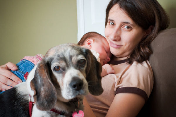 How Watching Dogs To Diapers Affected These Moms