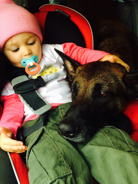 A Life With Dogs For Your Baby